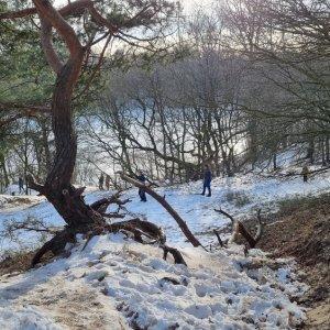 Tunxdorferwaldsee